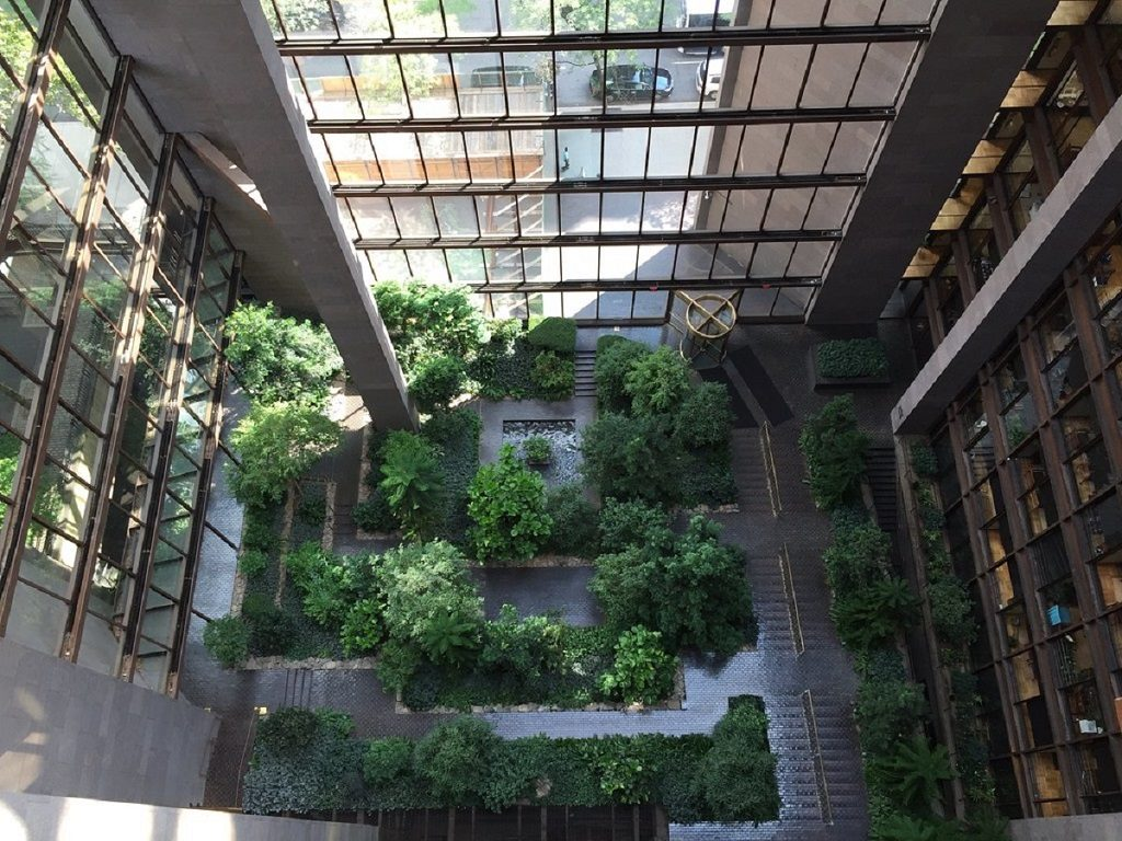 Un bosque tropical en Nueva York ¿quieres saber dónde está?
