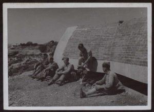 Imagen del mismo nido en 1938