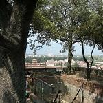 Torre Gunigi Wikipedia Commons by H005 foto pequeña