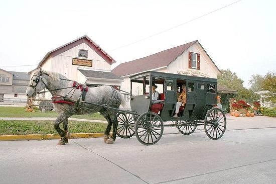 Recorrido guiado en una comunidad Amish.