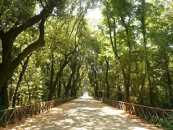Parco di Capodimonte de Nápoles.