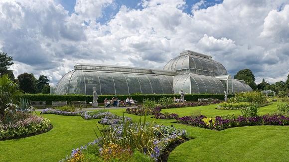 Real Jardín Botánico de Kew.